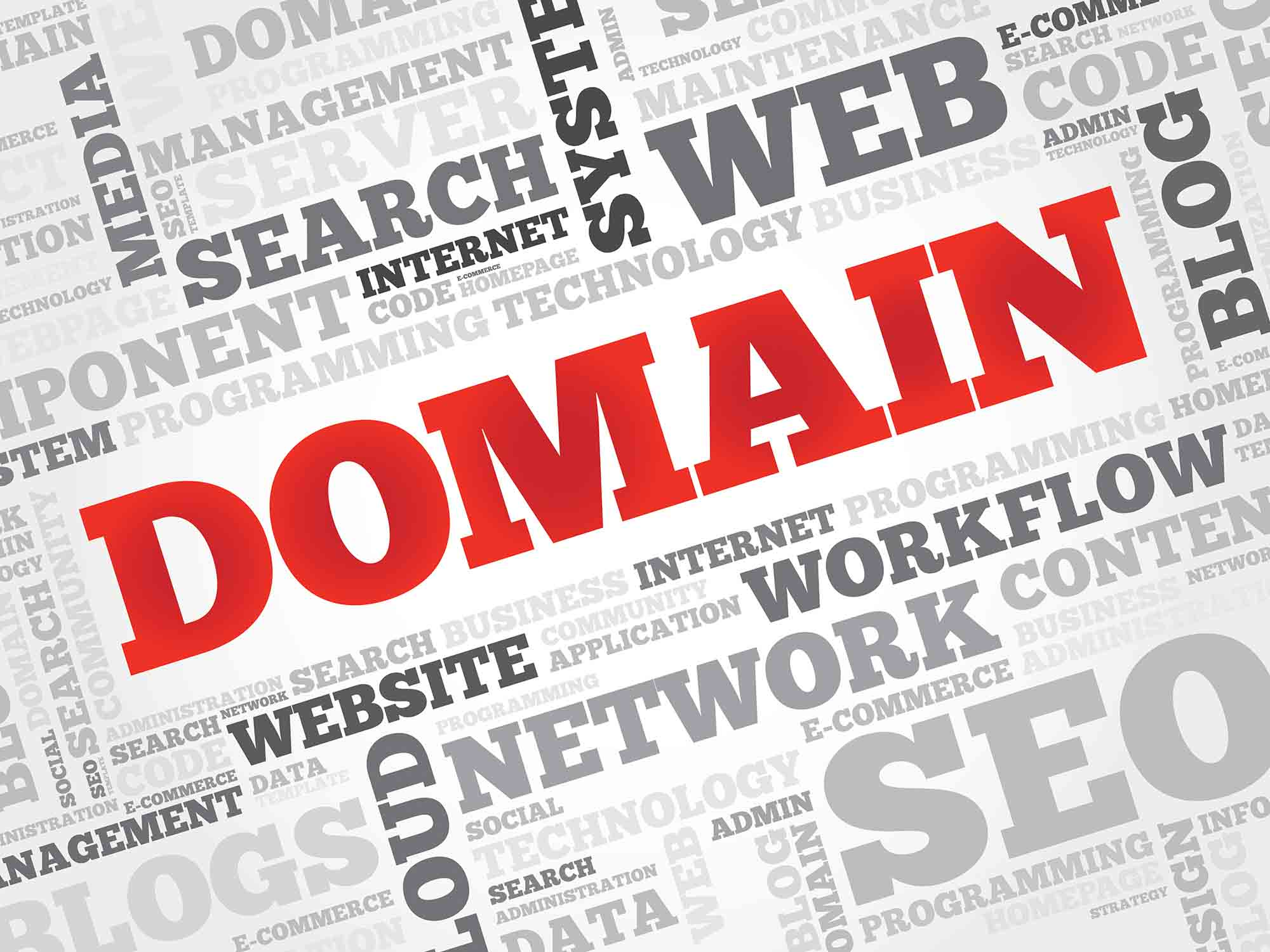 Your just about to buy your dream domain name STOP!!!